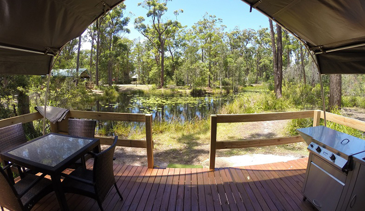 glamping-nsw-coffs-harbour
