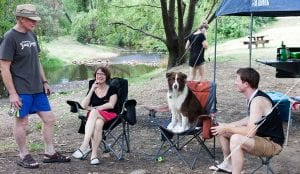 group of people sitting on camp chairs with their dog inside a Bright caravan park