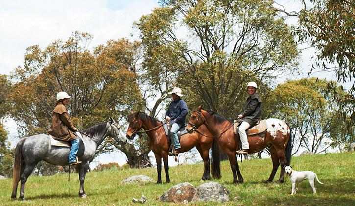 Feel like riding a horse at NRMA Jindabyne Holiday Park?